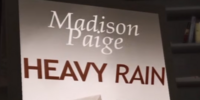 Heavy Rain (book)