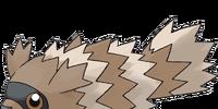 Zigzagoon (FireRed)