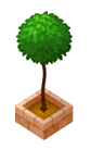 File:Gardentree.png