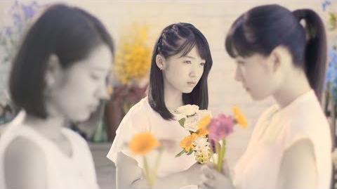 Tsubaki Factory - Hana Moyou (MV) (Promotion Edit)