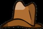 Pet Cowboy Hat