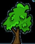 Chestnut Tree Small
