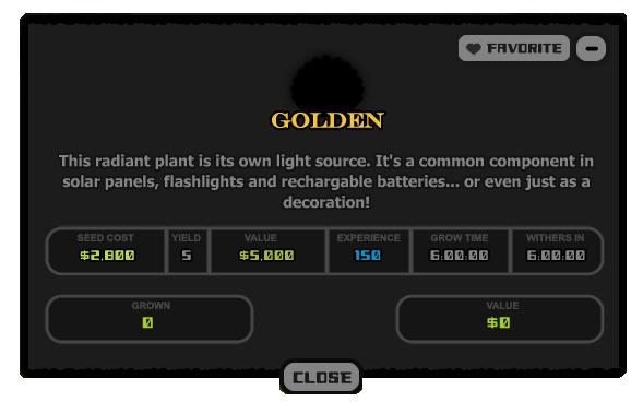 31 Golden
