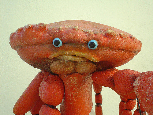 File:Red Crab.jpg