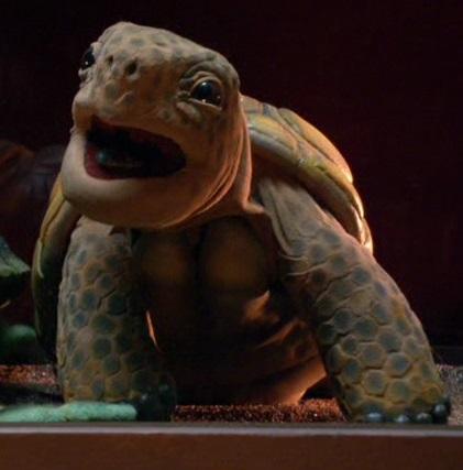 File:TAS-Turtle.jpg