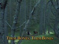 Them Bones TITLE