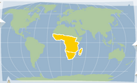 African swallowtail location