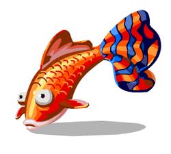 Orange guppy