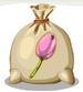 Pink Tulip Seed