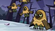 Owls 40