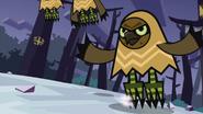 Owls 41