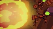 Ants 082