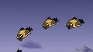 Owls 25
