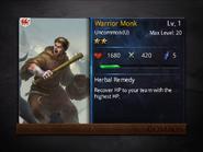 Warrior Monk1