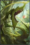 Creeping Anglerbush T1