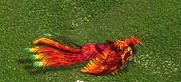 HoG Phoenix