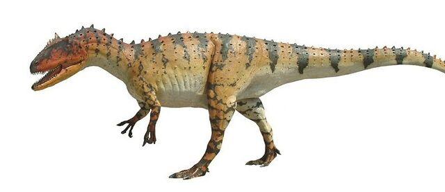 File:Allosaurus0.jpg