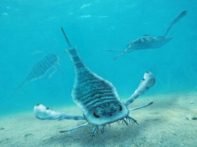 File:Eurypterus Paleoart.jpg