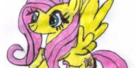 Fluttershy (Character What)