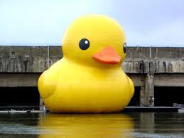 File:Rubber Duck.png