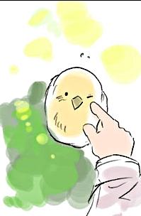 File:Gilbert's Bird.jpg