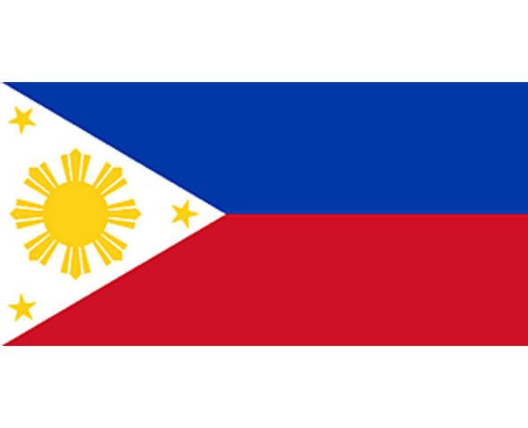 File:64180234-philippines-flag.jpg