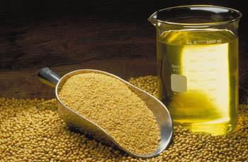 File:Soyabean-grain-and-oil.jpg