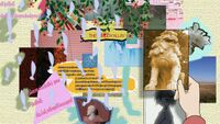 Hidamari Sketch Wikia - Season One (A Winter's Collage - 132)