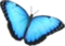 HO SEHunt Butterfly-icon