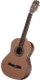 HO FPicnic Guitar-icon