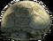 HO Beach Turtle-icon