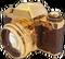 HO Beach Camera-icon