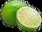 HO BriggsRoseGarden Lime-icon