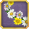Quest Task Get Daisy Chain-icon