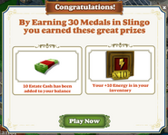 Slingo Promotion-Completed