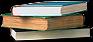 File:HO CBSNewsroom Books-icon.png