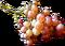 HO CBSNewsroom Grapes-icon