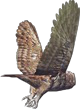 File:HO RomanyCamp Owl-icon.png