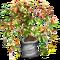 Material Creeper Tree-icon