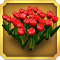 Quest Task Red Tulips-icon