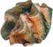 HO UWreck Giant Clam-icon