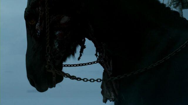 Archivo:Caballo espectro HBO.jpg