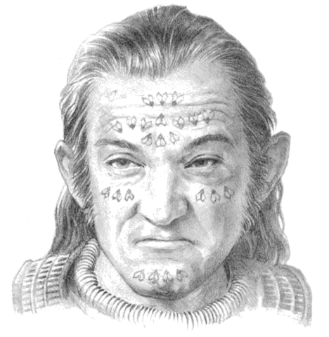 Archivo:Slave markings by Douglas Wheatley©.png