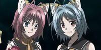 Ni and Li