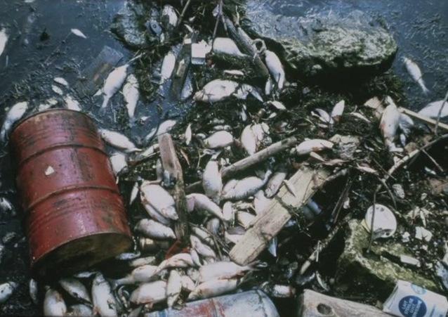 File:Garbage Island.jpg