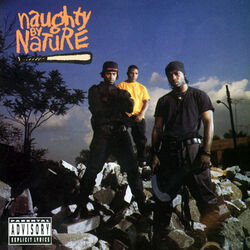 Naughty by Nature album