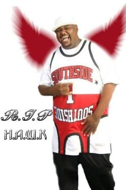 Big Hawk hawk-1-