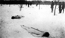 File:Jewish bodys in Jilava forest.JPG