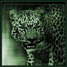 HC47 - U'wa jungle god - briefing
