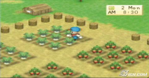 File:E3-2007-harvest-moon-boy-girl-shots-20070713000953800 640w.jpg